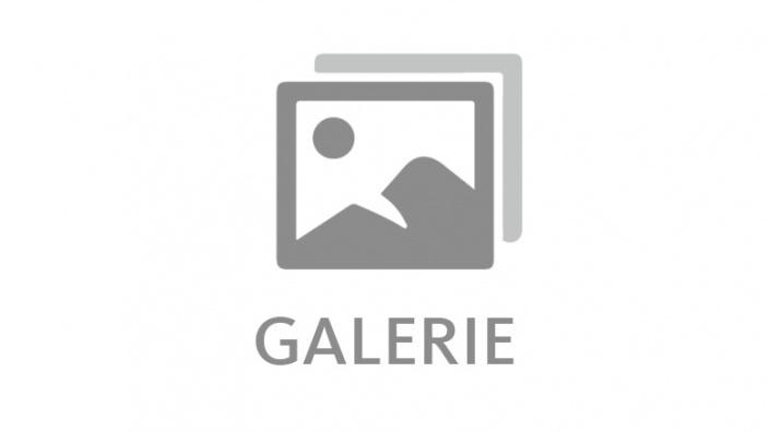 Galerie der MIT Sachsen